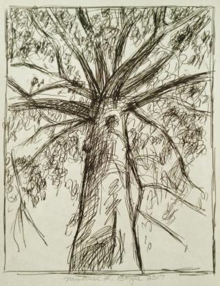Tree up (3)