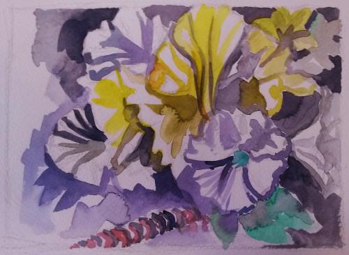 Flowers 7-8-2017 (2)
